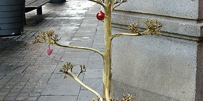 A dry agave flower stalk sprayed gold and used as a Christmas tree