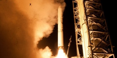 Frog caught in a NASA launch