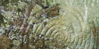 A wet, spiral rock carving at La Zarzita, Garafia, La Palma island